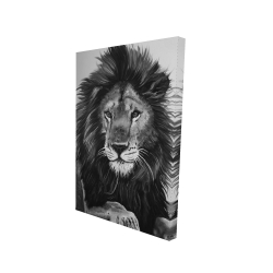 Canvas 24 x 36 - 3D - The lion king