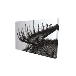 Canvas 24 x 36 - 3D - Moose plume