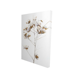 Canvas 24 x 36 - 3D - Cotton flowers branch