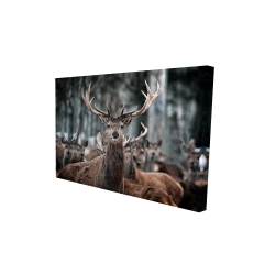 Canvas 24 x 36 - 3D - Stags