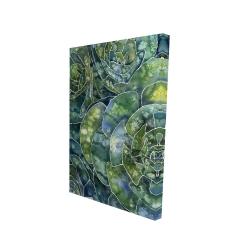 Toile 24 x 36 - 3D - Succulents abstrait