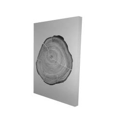 Canvas 24 x 36 - 3D - Grayscale oval shaped tree slab