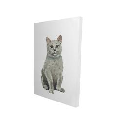 Canvas 24 x 36 - 3D - British shorthair cat