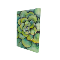 Canvas 24 x 36 - 3D - Watercolor succulent plant