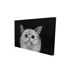 Canvas 24 x 36 - 3D - Watching cat