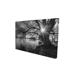 Canvas 24 x 36 - 3D -