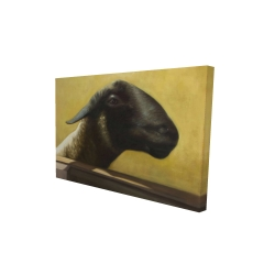 Canvas 24 x 36 - 3D - Young ram