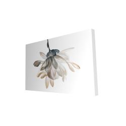 Canvas 24 x 36 - 3D - Softness