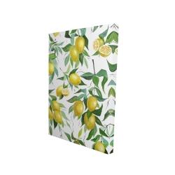 Canvas 24 x 36 - 3D - Lemon pattern