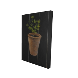 Canvas 24 x 36 - 3D - Plant of parsley