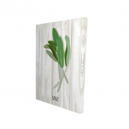 Sage on wood
