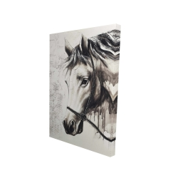 Canvas 24 x 36 - 3D - Alpha the white horse