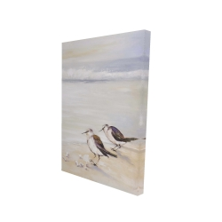 Canvas 24 x 36 - 3D - Two sandpipers on the beach