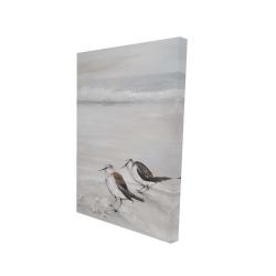Canvas 24 x 36 - 3D - Two sandpipiers birds