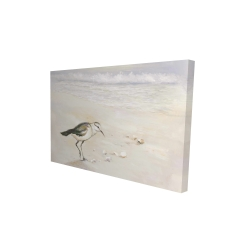 Canvas 24 x 36 - 3D - Semipalmated sandpiper on the beach