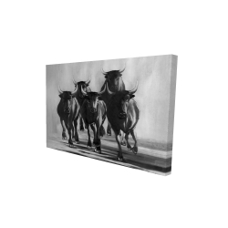 Canvas 24 x 36 - 3D - Group of bulls at galops