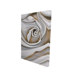 Canvas 24 x 36 - 3D - White rose closeup