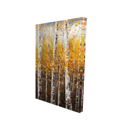 Canvas 24 x 36 - 3D - Birches by sunny day