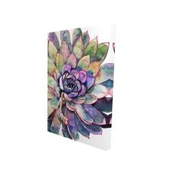 Canvas 24 x 36 - 3D - Multicolored succulent