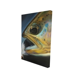 Canvas 24 x 36 - 3D - Golden trout with fly fishing flie