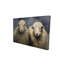 Canvas 24 x 36 - 3D - Wool sheeps
