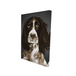 Canvas 24 x 36 - 3D - Brown english springer spaniel