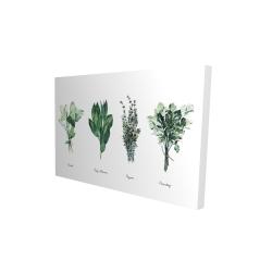 Canvas 24 x 36 - 3D - Fine herbs