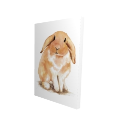 Canvas 24 x 36 - 3D - Lop-rabbit