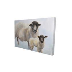 Canvas 24 x 36 - 3D - Sheep and its baby