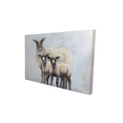 Canvas 24 x 36 - 3D - Sheep family