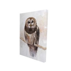 Canvas 24 x 36 - 3D - Barred owl