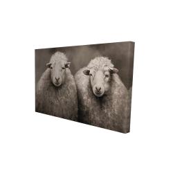 Canvas 24 x 36 - 3D - Sheep sepia