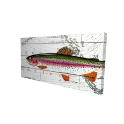 Canvas 24 x 48 - 3D - Trout on a world map