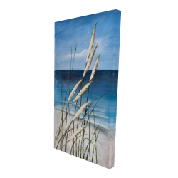 Canvas 24 x 48 - 3D - Wild herbs in the wind on at the beach