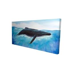 Canvas 24 x 48 - 3D - Blue whale