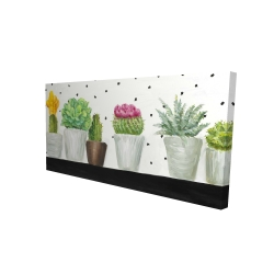 Canvas 24 x 48 - 3D - Mini cactus and succulents
