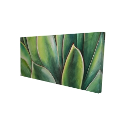 Canvas 24 x 48 - 3D - Watercolor agave plant