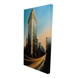 Canvas 24 x 48 - 3D - Flatiron building in light