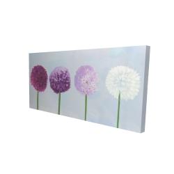 Canvas 24 x 48 - 3D - Dahlia pompon