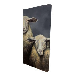Canvas 24 x 48 - 3D - Two sheeps