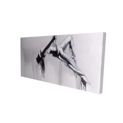 Canvas 24 x 48 - 3D - Dancer on aerial contortion