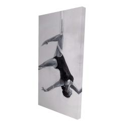 Canvas 24 x 48 - 3D - Dancer on aerial silks