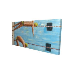 Canvas 24 x 48 - 3D - Swimmers