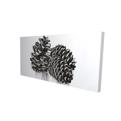 Canvas 24 x 48 - 3D - Three small pine cones