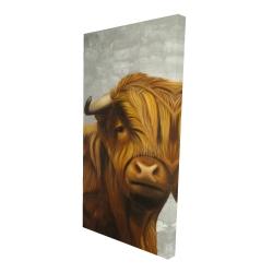 Canvas 24 x 48 - 3D - Highland cattle