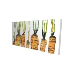 Canvas 24 x 48 - 3D - Watercolor carrots