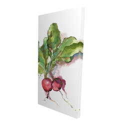 Canvas 24 x 48 - 3D - Watercolor radish