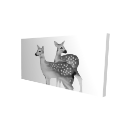 Canvas 24 x 48 - 3D - Faon black and white