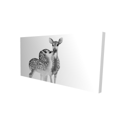 Canvas 24 x 48 - 3D - Fawns love