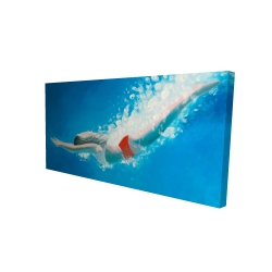 Canvas 24 x 48 - 3D - Diving jump